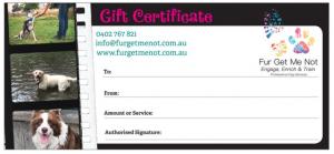 Dog Gift Certificate | Brisbane & Bayside Dog Training